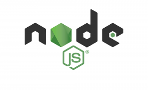 node js web development