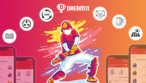 Extra features of Dream11