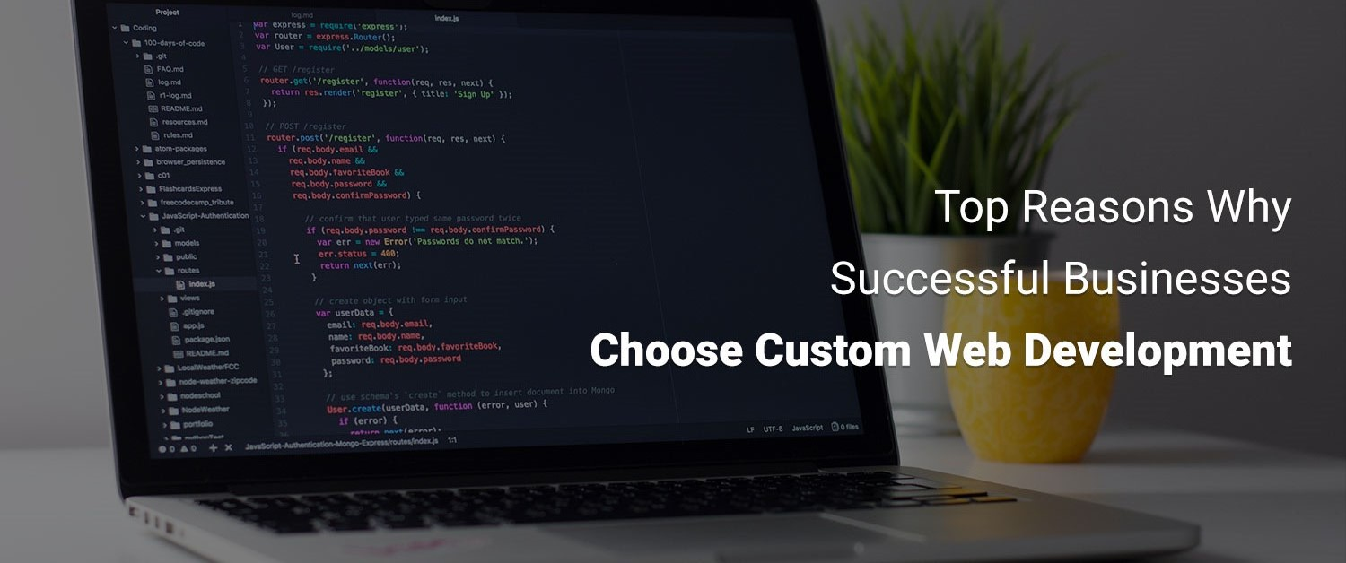 top-13-reasons-why-successful-businesses-choose-custom-web-development