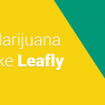 Top 5 Marijuana Apps Like Leafly