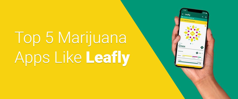 Top 5 Marijuana Apps Like Leafly