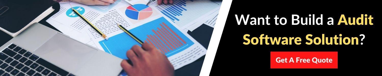 audit-software-development