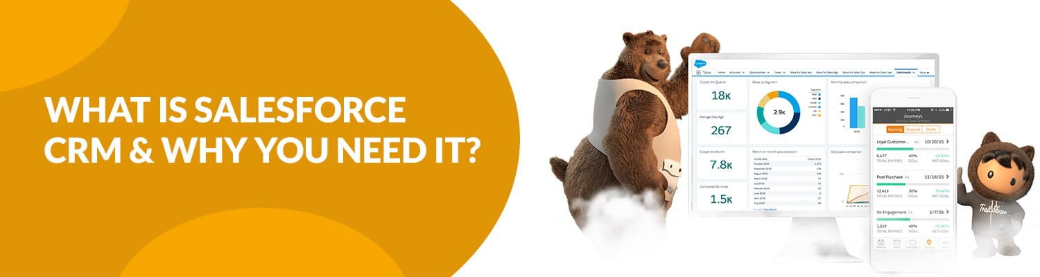 What-is-Salesforce-CRM-&-Why-You-Need-It