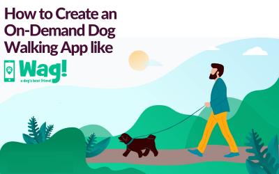 Create app like Wag